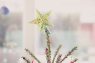 Golden star Christmas tree topperの写真素材 [FYI02169211]