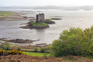 View of island castle on lake, Castle Stalker, Argyll, Scotlandの写真素材 [FYI02169712]