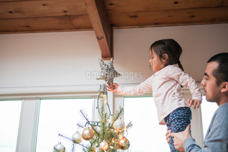 Father lifting toddler girl putting star on Christmas treeの写真素材 [FYI02169776]
