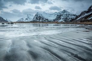 Snow covered mountains behind cold beach, Skagsanden Beach, Lofoten Islands, Norwayの写真素材 [FYI02169965]
