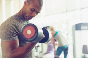 Focused man doing dumbbell biceps curls at gymの写真素材 [FYI02170106]