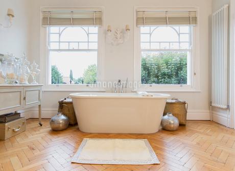 Home showcase interior bathtub and parquet floorの写真素材 [FYI02170350]