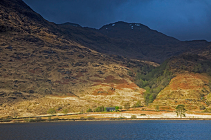 Green and brown mountains over lake, Loch Eilt, Glenfinnan, Scotlandの写真素材 [FYI02170421]
