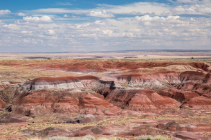 Painted Desert Petrified Forest National Park, Arizona, United Statesの写真素材 [FYI02170446]