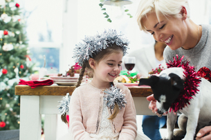 Mother and daughter feeding dog at Christmas dinnerの写真素材 [FYI02171041]