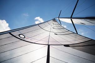 Sailboat sail against sunny skyの写真素材 [FYI02171061]