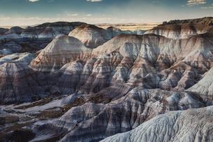 Blue Mesa Petrified Forest National Park, Arizona United Statesの写真素材 [FYI02171102]