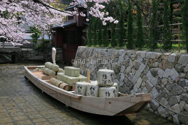 桜咲く高瀬川一之船入の写真素材 [FYI02171823]