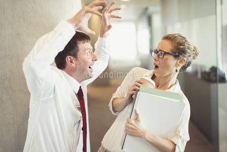 Businessman making snarling gesture at terrified businesswomanの写真素材 [FYI02171863]