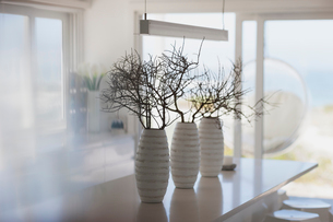 Modern white vases with branches on kitchen islandの写真素材 [FYI02172008]