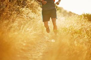 Man running on sunny trail through tall grassの写真素材 [FYI02172625]