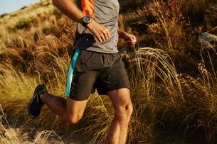 Man running on trail through tall grassの写真素材 [FYI02172639]