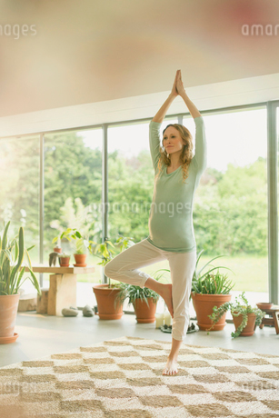 Pregnant woman practicing yoga tree poseの写真素材 [FYI02172779]