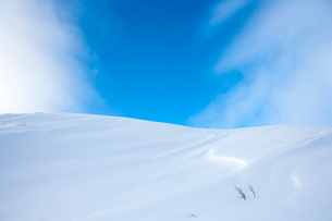 Snow-covered hill under blue skyの写真素材 [FYI02172920]