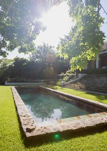 Sunny tree and swimming poolの写真素材 [FYI02173670]