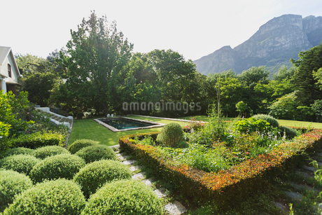 Lush sunny green garden with mountain viewの写真素材 [FYI02174523]