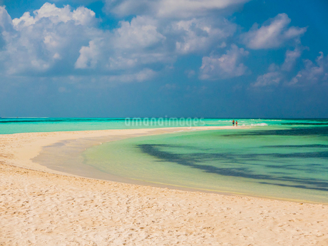 People in distance walking on tropical beach, Maldivesの写真素材 [FYI02174852]