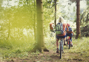 Family mountain biking on trail in woodsの写真素材 [FYI02175328]