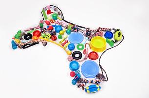 Still life concept dog toys forming dog boneの写真素材 [FYI02175675]