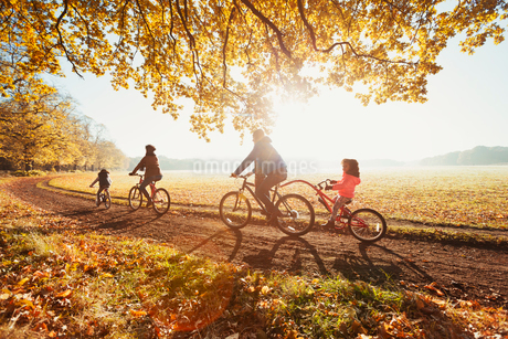 Young family bike riding in sunny autumn parkの写真素材 [FYI02175708]