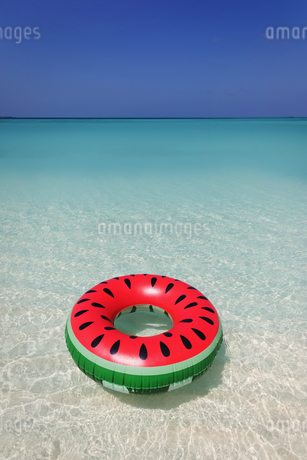 Watermelon inflatable ring floating in blue tropical oceanの写真素材 [FYI02176148]