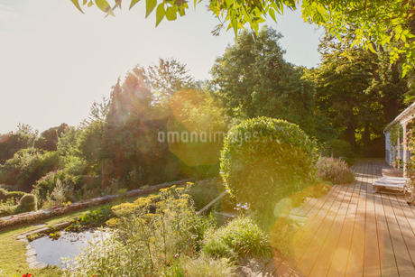 Sunny summer garden with green treesの写真素材 [FYI02176394]
