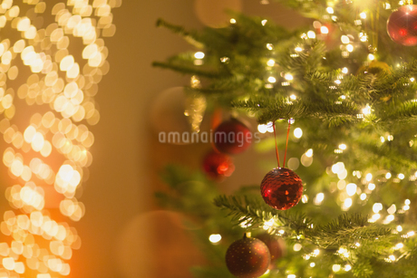Red ornaments hanging from Christmas tree with string lightsの写真素材 [FYI02176412]