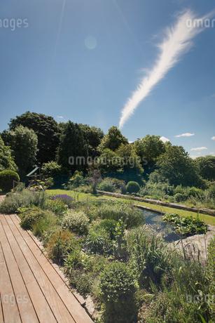 Vapor trail in sunny blue sky over lush landscaped gardenの写真素材 [FYI02176491]