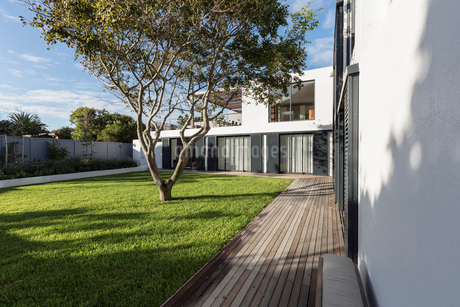 Sunny modern, luxury home showcase exterior yard with treeの写真素材 [FYI02176570]