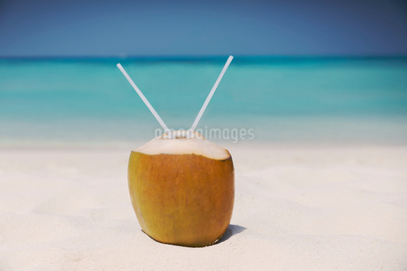 Coconut with two straws on sunny tropical ocean beachの写真素材 [FYI02176640]