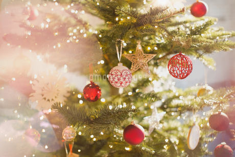 Red, white and gold ornaments and star on Christmas treeの写真素材 [FYI02176661]