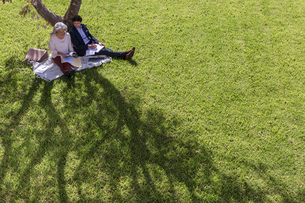 Businessman and businesswoman working on blanket under tree in sunny yardの写真素材 [FYI02176700]