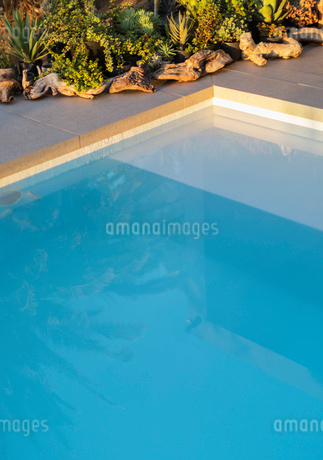 Reflection of palm tree in placid blue swimming poolの写真素材 [FYI02176795]