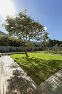 Sunshine casting tree shadow in luxury gardenの写真素材 [FYI02176848]