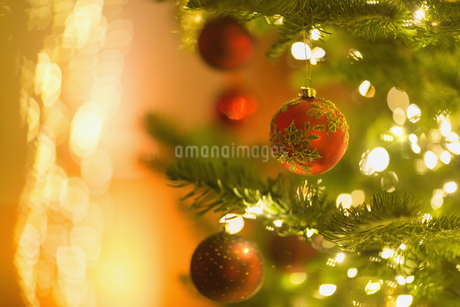Red ornaments hanging from branch of Christmas tree with string lightsの写真素材 [FYI02176897]