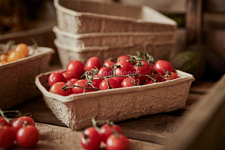 Still life fresh, organic, healthy, red vine cherry tomatoes in containerの写真素材 [FYI02176947]