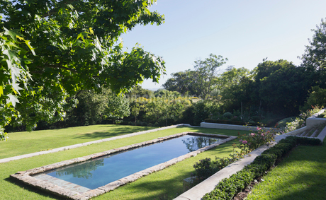 Sunny grass and swimming poolの写真素材 [FYI02176998]
