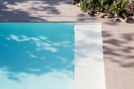 Sunny reflection of tree in blue swimming poolの写真素材 [FYI02177023]