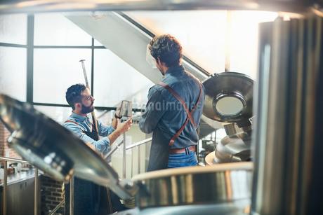 Coffee roasters talking at vatsの写真素材 [FYI02177046]