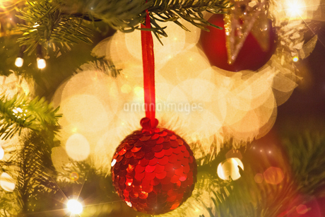 Close up red sequin ornament hanging from branch of Christmas tree with string lightsの写真素材 [FYI02177124]