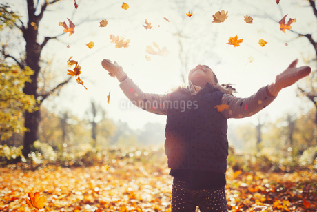Playful girl throwing autumn leaves overhead in sunny parkの写真素材 [FYI02177316]