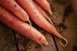 Still life close up fresh, organic, healthy, rustic, dirty orange carrotsの写真素材 [FYI02177460]