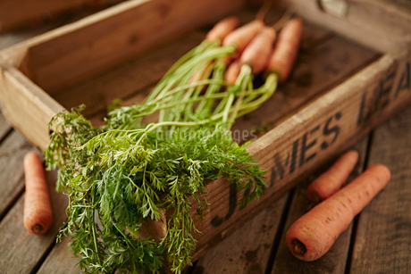 Still life fresh, organic, healthy carrots with stems in wood crateの写真素材 [FYI02177487]