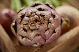 Still life close up fresh, organic healthy purple artichokeの写真素材 [FYI02177498]
