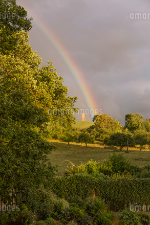 Rainbow behind lush green trees in countrysideの写真素材 [FYI02177530]