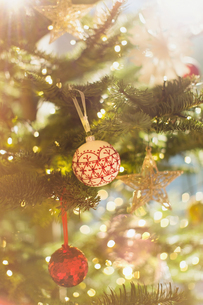 Red, white and gold ornaments hanging from Christmas treeの写真素材 [FYI02177650]