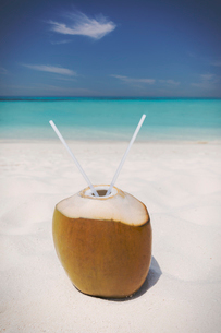 Coconut with two straws on sunny tropical ocean beachの写真素材 [FYI02177676]