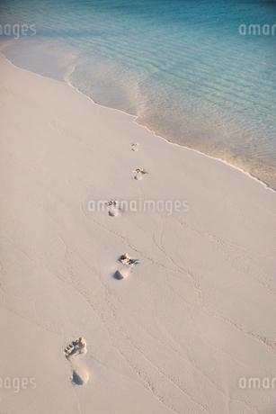 Footprints in sand on tropical beachの写真素材 [FYI02177694]