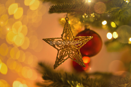 Close up gold star ornament hanging from Christmas tree branchの写真素材 [FYI02177731]