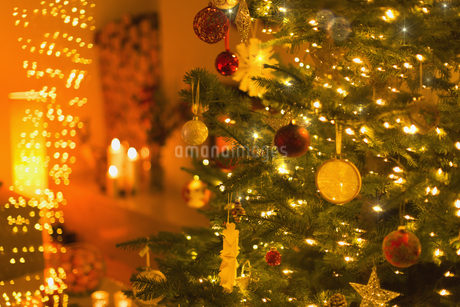 Ornaments and string lights on Christmas treeの写真素材 [FYI02177732]